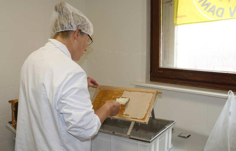 Verarbeitung Honig